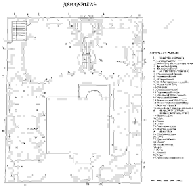 План посадок растений. Сад в средиземноморском стиле от Руслан Михайлов rmgarden Средиземноморский
