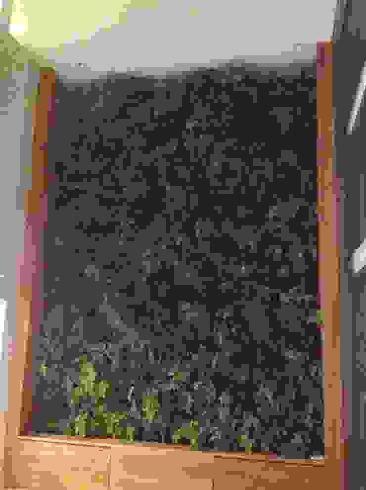 Paisagismo. Vertical:  tropical por Top Gardens Paisagismo Vertical,Tropical