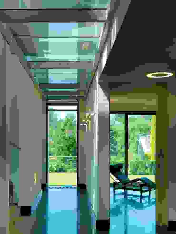WIZJA Modern Corridor, Hallway and Staircase