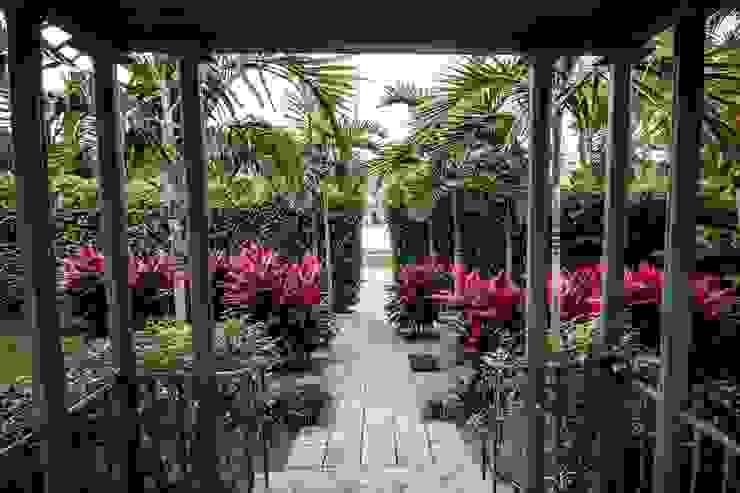 Jardins modernos por Elías Arquitectura Moderno