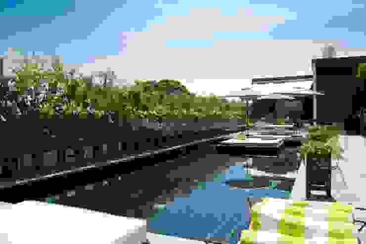 Flor de Mayo Hotel & Restaurant Albercas modernas de Elías Arquitectura Moderno