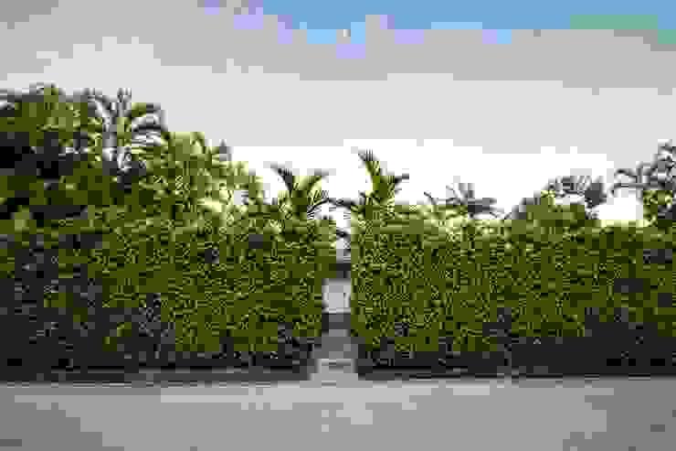 Dilido Island House-Miami 2 Jardines modernos de Elías Arquitectura Moderno
