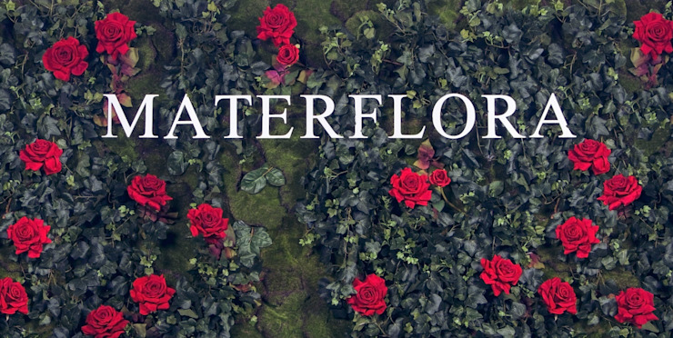 classic  by Materflora Lda., Classic