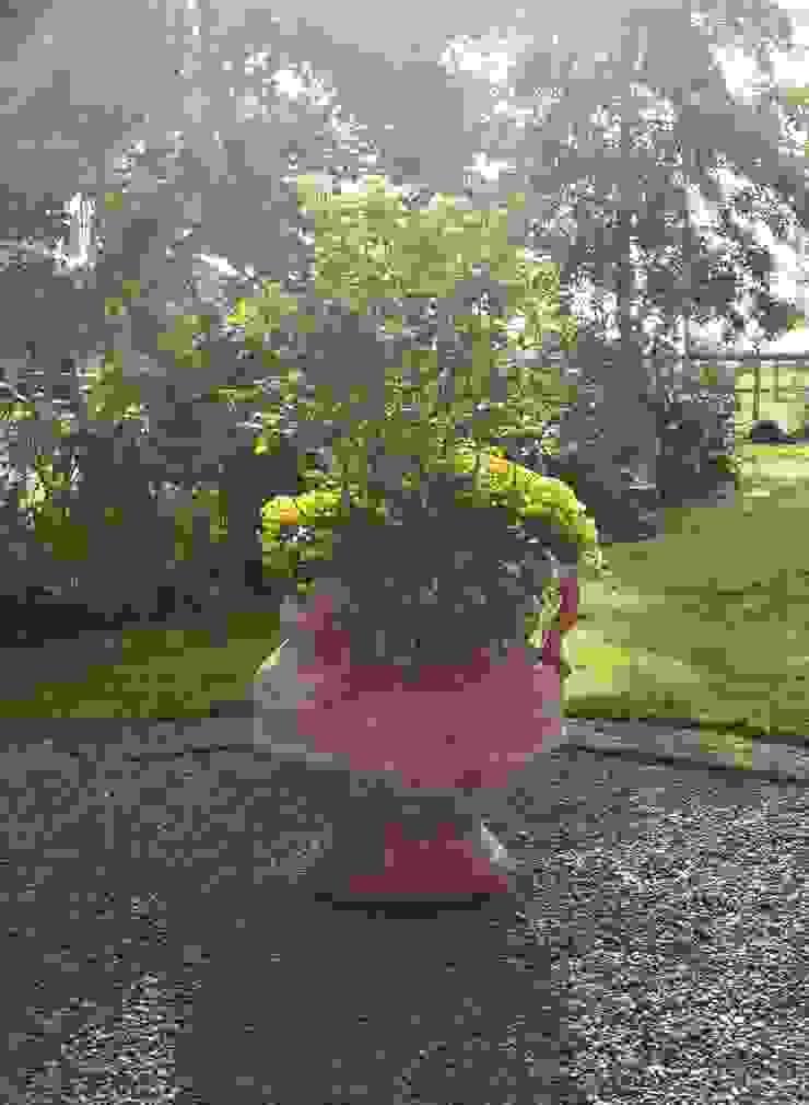 Sunny show off Terrecotte Europe Balconies, verandas & terraces Accessories & decoration Pottery Brown