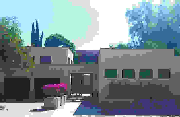 Terra Modern houses