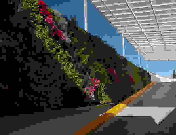 Estacionamiento Ecológico Pensiones Civiles del Estado de Chihuahua Clínicas y consultorios médicos de estilo moderno de MuchoVerde.mx Moderno