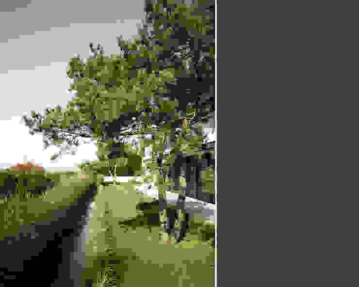 Modern Garden by meier architekten zürich Modern Concrete