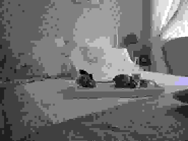 Modern style bedroom by DreamHouse.info.pl Modern