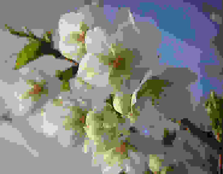 Fruitbomen Landelijke tuinen van Boekel Tuinen Landelijk