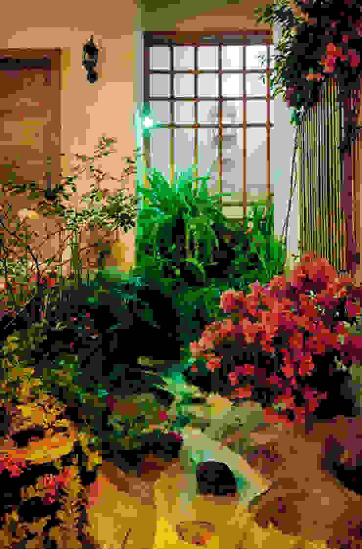 la cascada Excelencia en Diseño Jardines de estilo asiático Bambú Amarillo