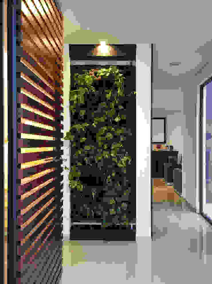 MURO VERDE COMO REMATE VISUAL Pasillos, halls y escaleras minimalistas de Región 4 Arquitectura Minimalista