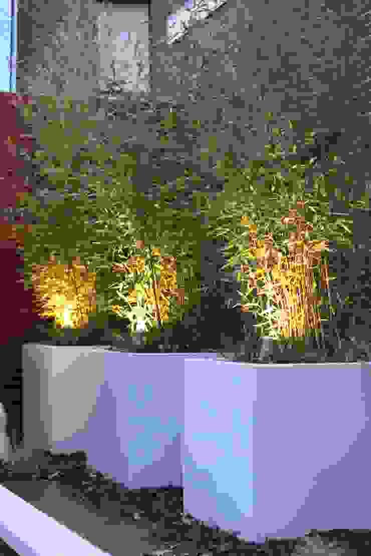 Bloembakken met bamboe Moderne tuinen van Hoveniersbedrijf Guy Wolfs Modern