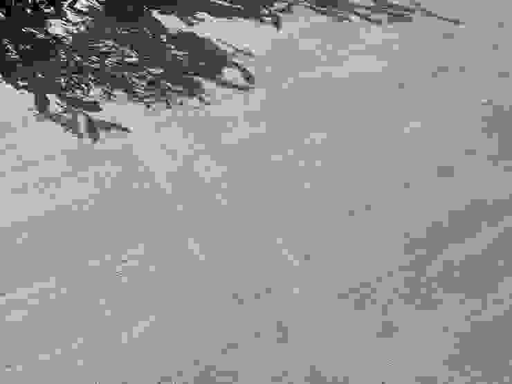 Wildwood por Love Tiles Industrial
