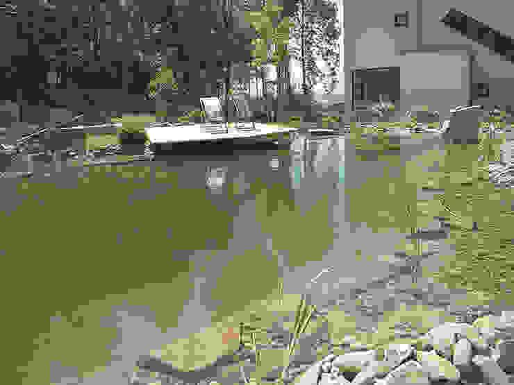Garten mit Schwimmteich Moderne Pools von Kräftner Landschaftsarchitektur Modern