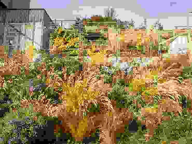 Kräftner Landschaftsarchitektur Modern Garden