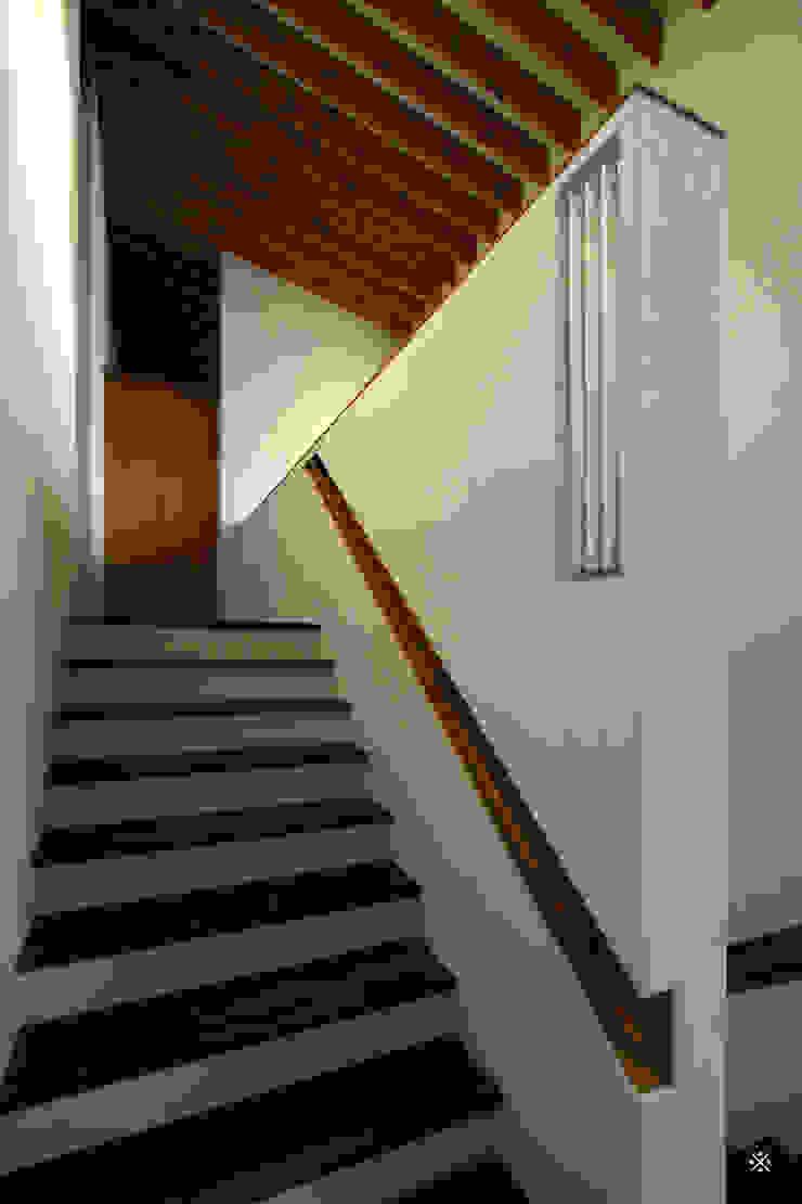 神木本町の家 モダンスタイルの 玄関&廊下&階段 の 向山建築設計事務所 モダン