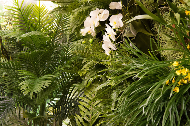 Junia Lobo Paisagismo Country style conservatory