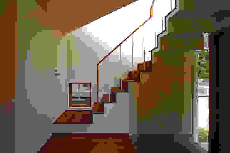 極楽寺の家 モダンスタイルの 玄関&廊下&階段 の 向山建築設計事務所 モダン