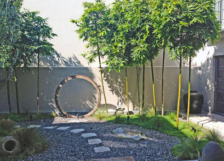 Vista Frontal Jardines modernos de Terra Moderno
