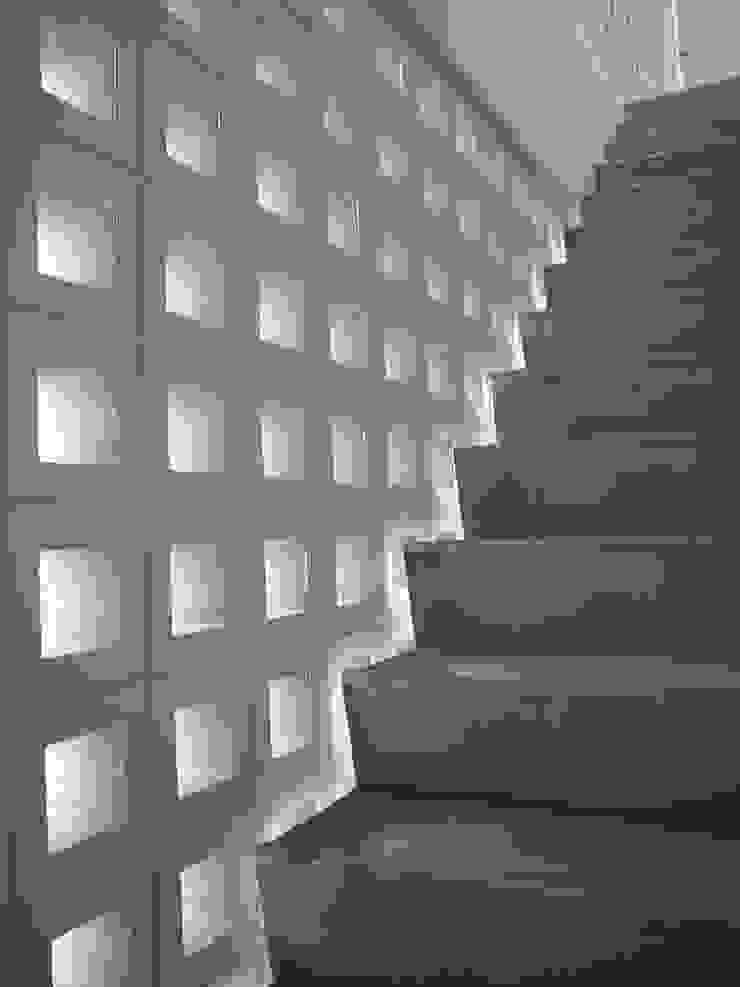 Y flat モダンスタイルの 玄関&廊下&階段 の 向山建築設計事務所 モダン