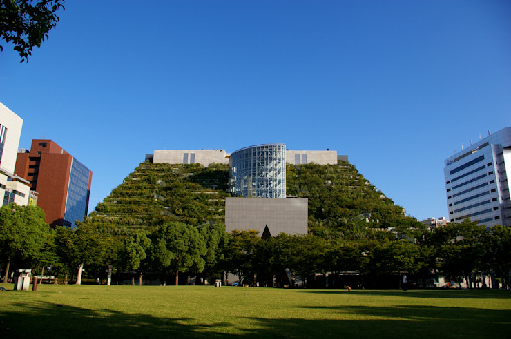 屋上緑化 モダンな 家 の y-ikegami モダン