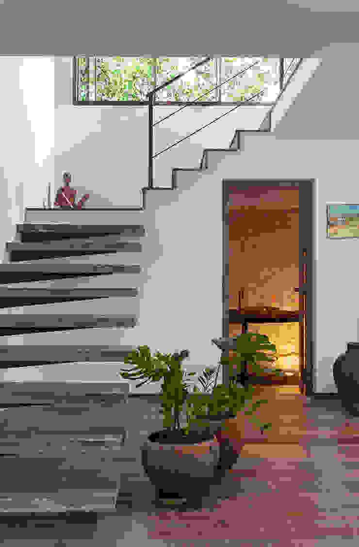 Vida de Vila Modern Corridor, Hallway and Staircase Solid Wood Wood effect
