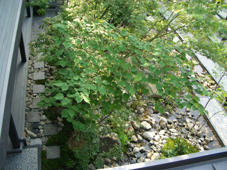 雑木の庭。 オリジナルな 庭 の 酒井光憲・環境建築設計工房 オリジナル 木 木目調