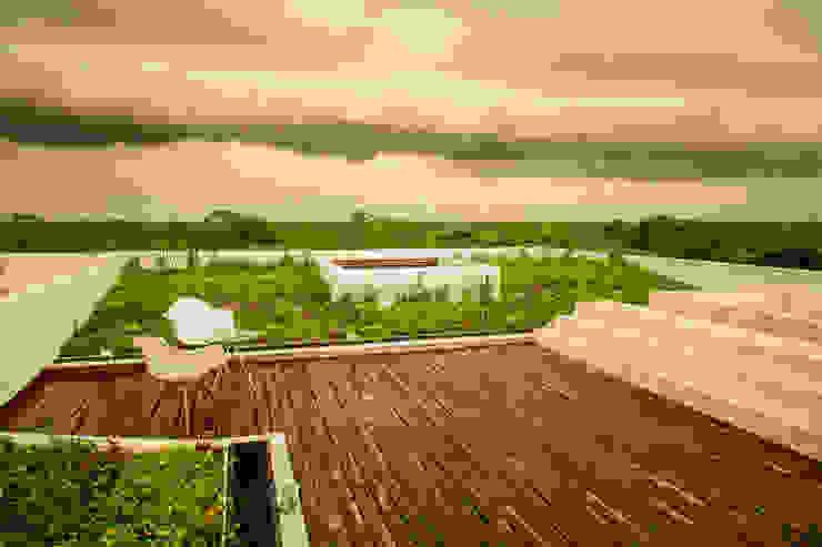 OM Balcones y terrazas modernos de FGO Arquitectura Moderno Madera maciza Multicolor