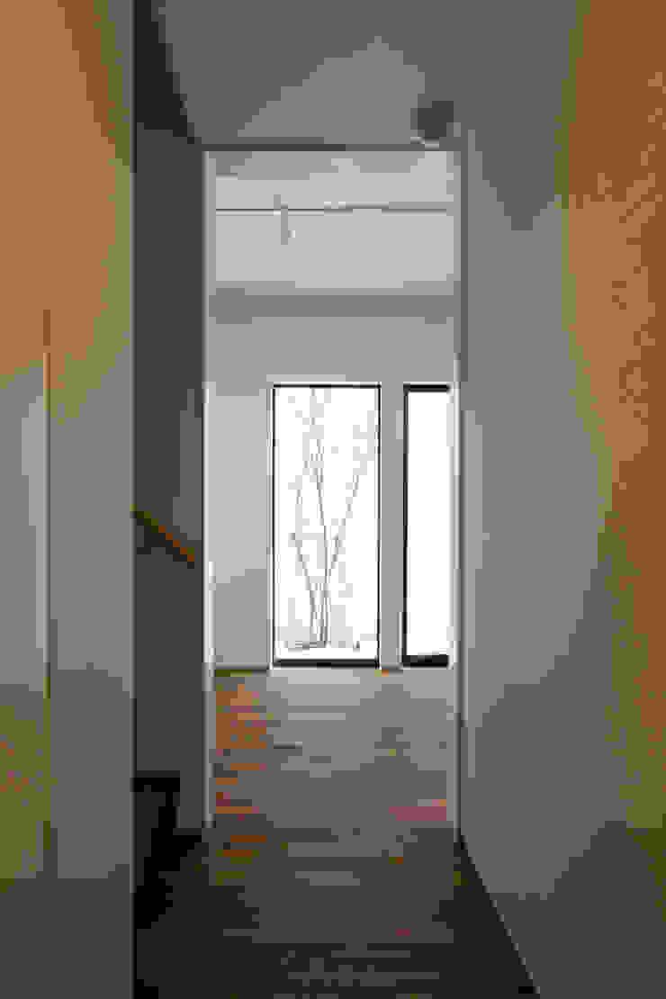 廊下よりテラスの植込みを望む|深沢の家 オリジナルスタイルの 玄関&廊下&階段 の U建築設計室 オリジナル