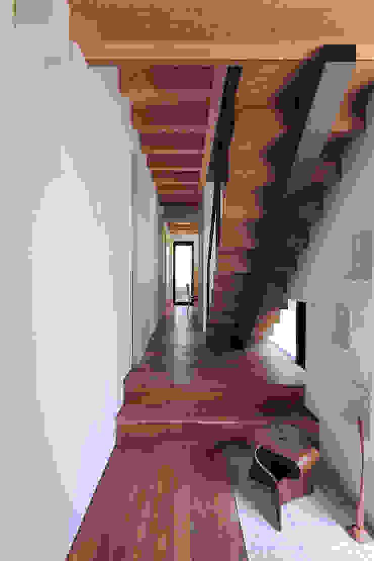 玄関|桜坂の家 モダンスタイルの 玄関&廊下&階段 の U建築設計室 モダン