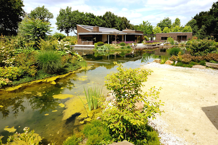 Zwemvijver Weert:  Tuin door Tuindesign & Styling Ves Reynders,