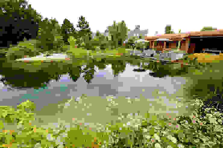 Taman Modern Oleh Tuindesign & Styling Ves Reynders Modern