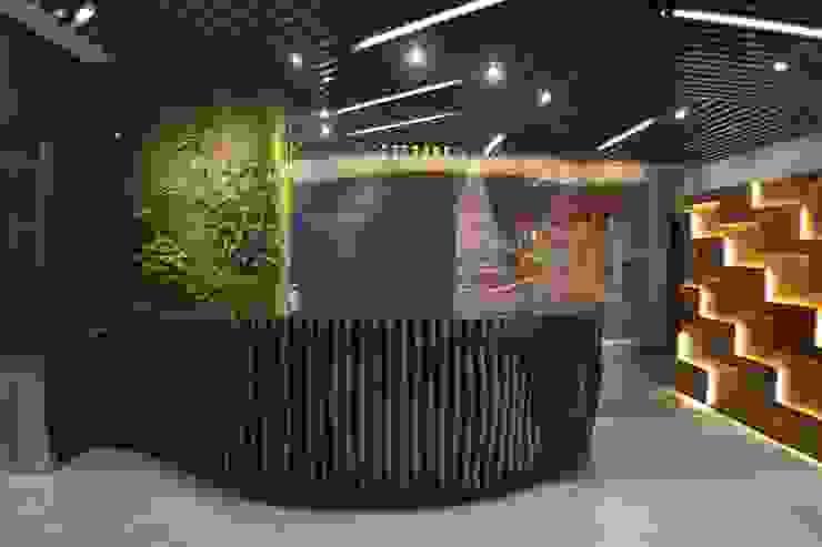 Recepción de Maka Arquitectura Ecléctico