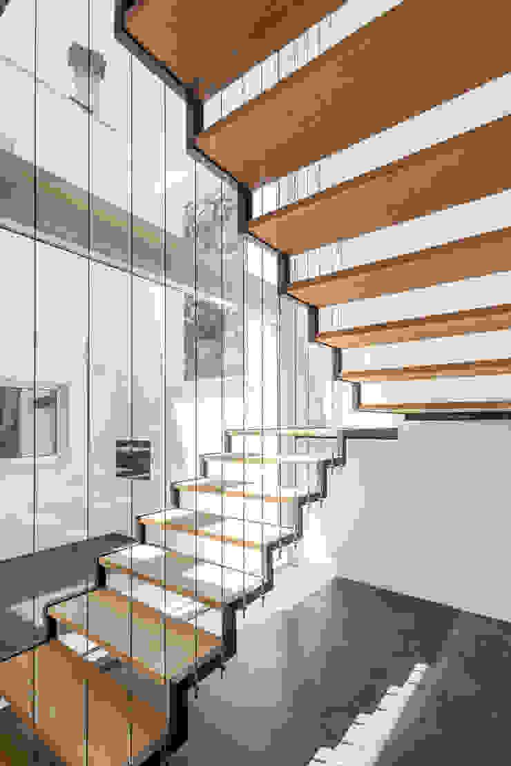 Minimalist corridor, hallway & stairs by FPA - filipe pina arquitectura Minimalist