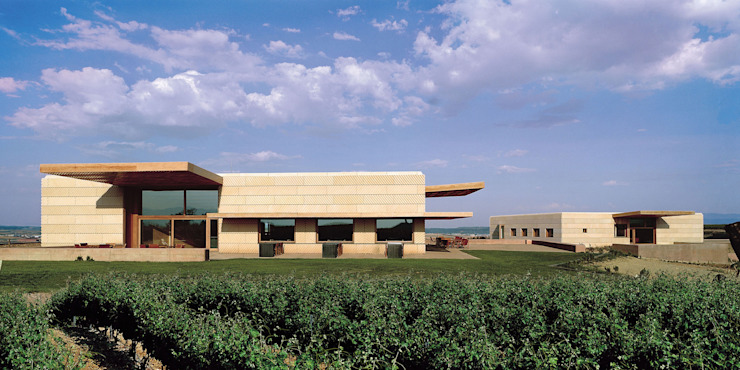 Bodegas Campo Viejo – Bodegas Juan Alcorta. Edificios Social y de Oficinas Bodegas de vino de estilo minimalista de Ignacio Quemada Arquitectos Minimalista Piedra