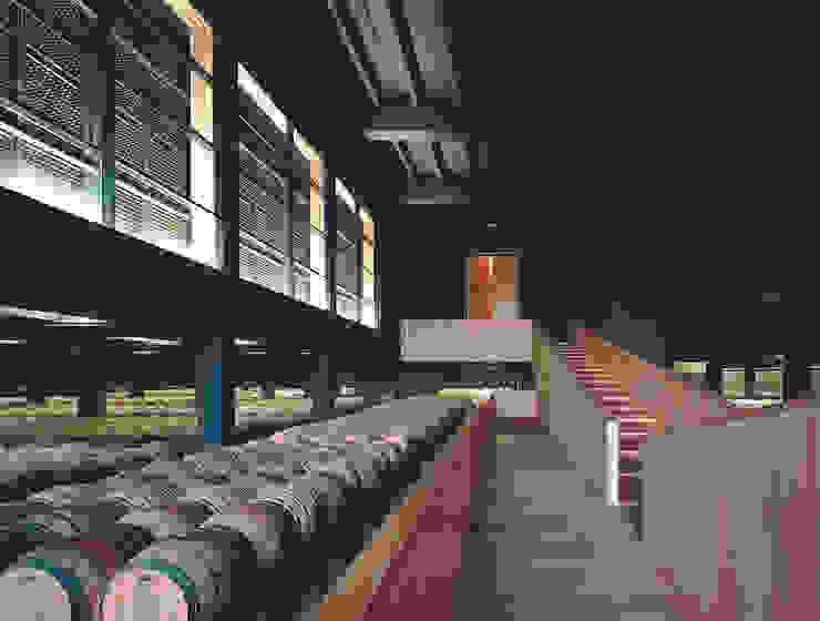 Bodegas Campo Viejo – Bodegas Juan Alcorta. Nave de crianza en barricas. Bodegas de vino de estilo minimalista de Ignacio Quemada Arquitectos Minimalista Madera Acabado en madera