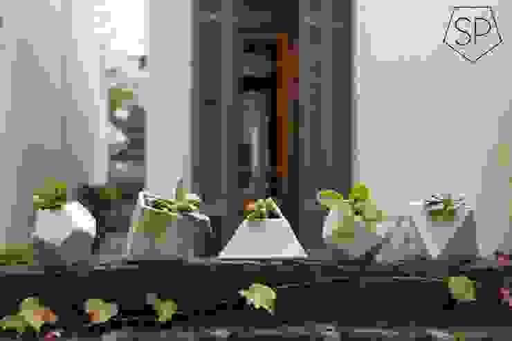 Macetas de cerámica:  de estilo  por Sólido Platónico,Moderno
