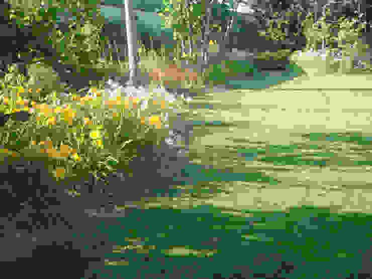 matiteverdi Jardins modernos