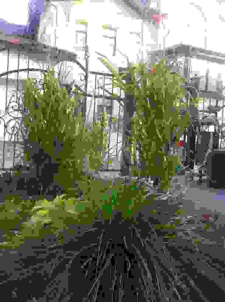 Klasik Bahçe TOPOS Klasik