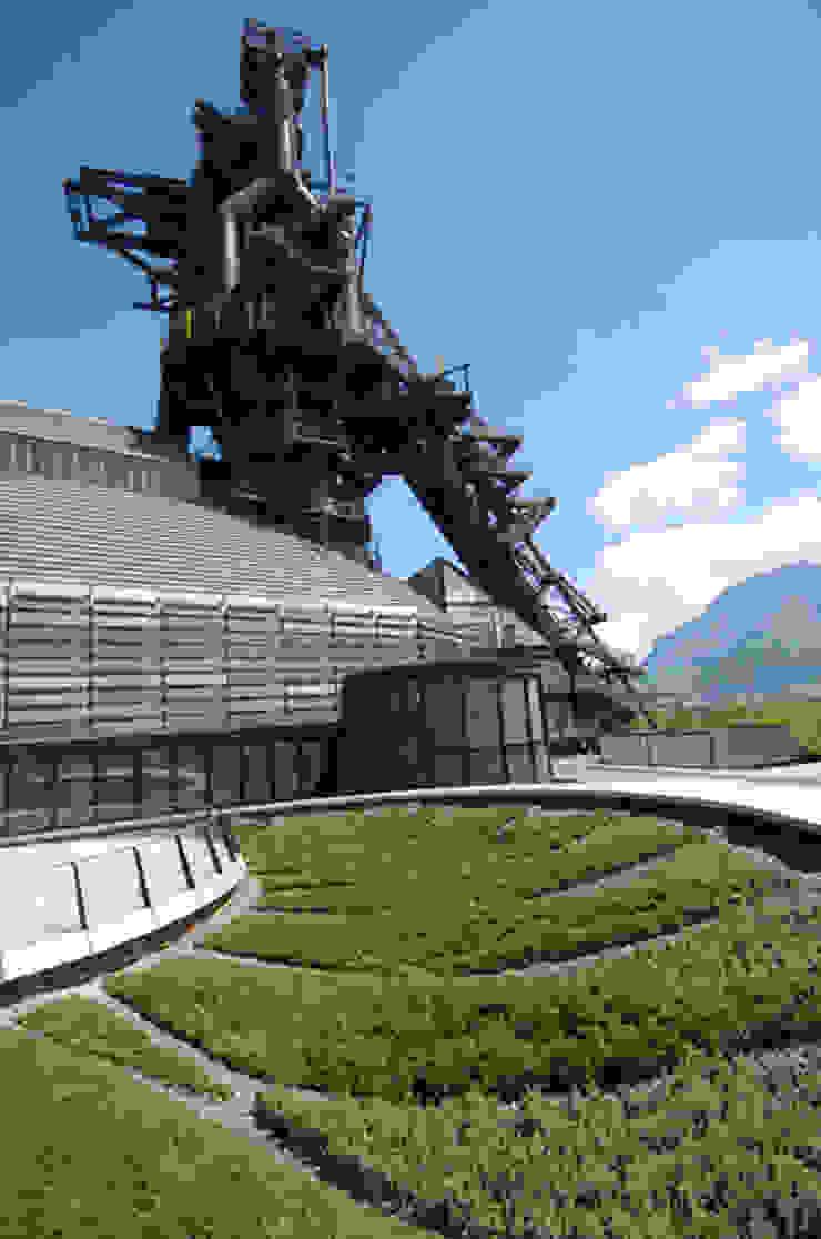 Detalle de techo verde y Horno Museos de estilo industrial de HARARI LANDSCAPE Industrial