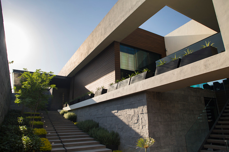 Jardines de estilo moderno de HARARI LANDSCAPE Moderno