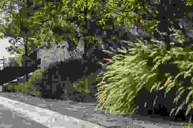 Garden by HARARI LANDSCAPE , Modern