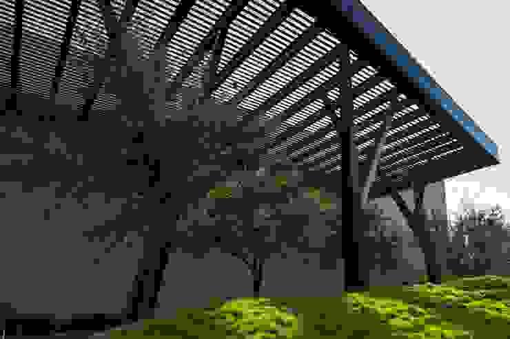 PUEBLO SERENA Jardines modernos de HARARI LANDSCAPE Moderno