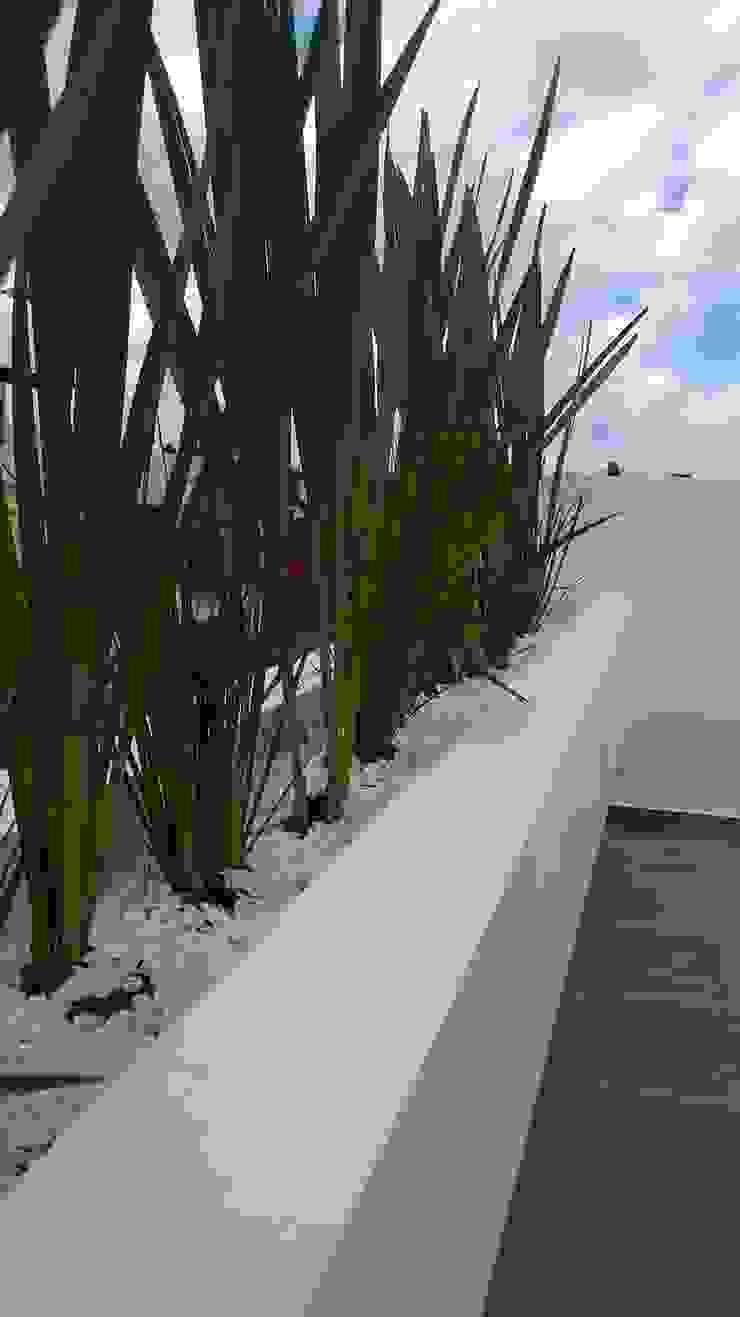 Jardineras casa zamora de Bamboo design & garden Moderno Caliza