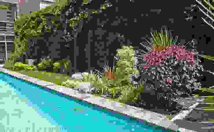 abpaisajismo Tropical style garden