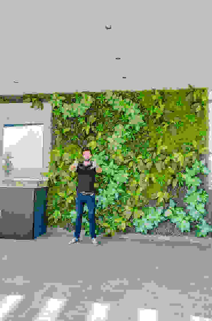 HUICHOL Jardines de estilo moderno