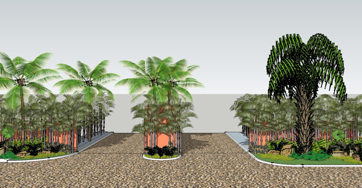 Tropical style garden by Tropico Jardineria Tropical