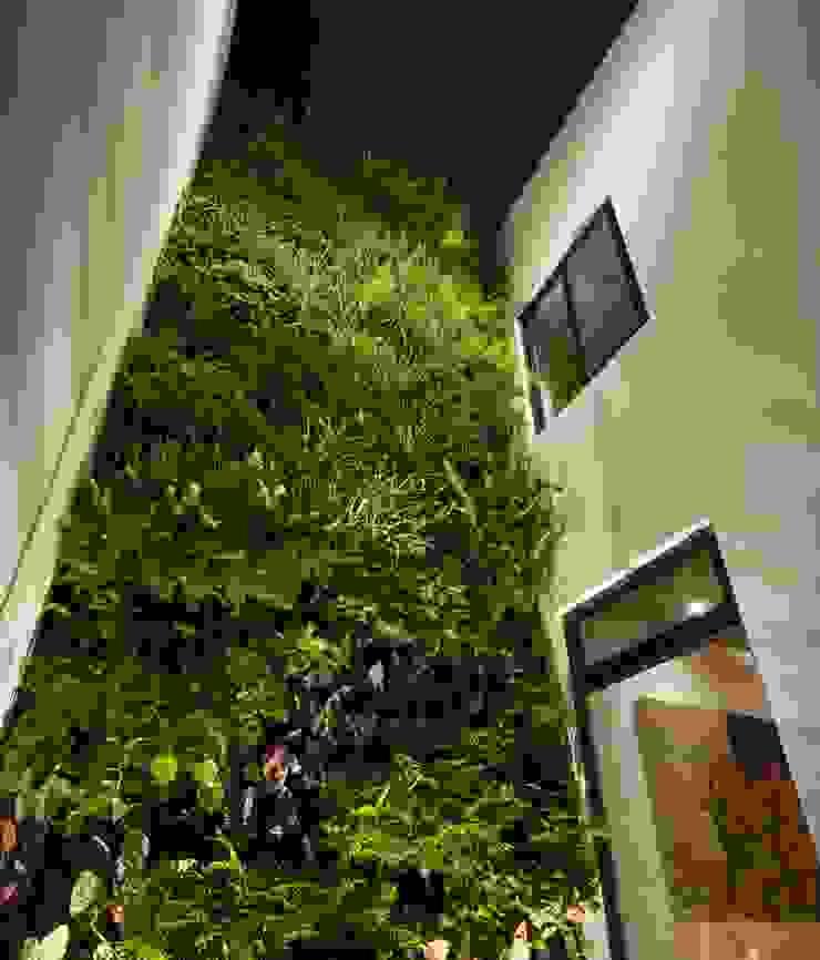 Moderner Garten von LGZ Taller de arquitectura Modern Naturfaser Beige