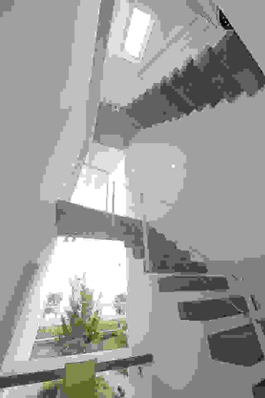 K邸 モダンスタイルの 玄関&廊下&階段 の 株式会社岡部克哉建築設計事務所 モダン