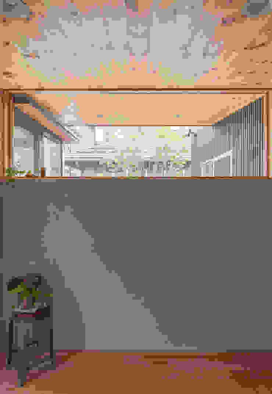 玄関から庭の木を眺める モダンスタイルの 玄関&廊下&階段 の 株式会社ブレッツァ・アーキテクツ モダン